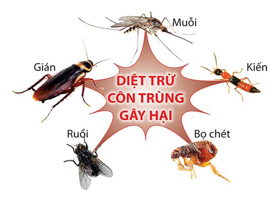 diệt các côn trùng gây hại