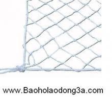 Lưới an toàn