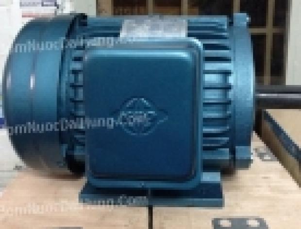 Motor điện 3 pha