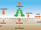 Công nghệ xử lý nước rỉ rác không phát thải của bãi chôn lấp