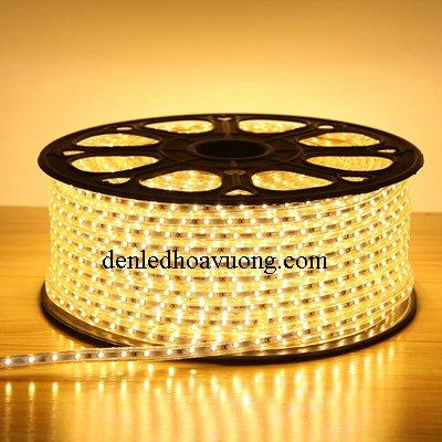 Đèn Led Dây Đôi Siêu Sáng 2835 Main 10mm