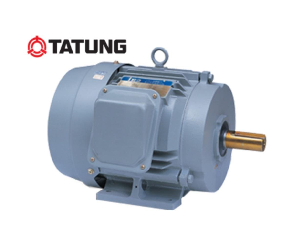 Động cơ điện Motor Tatung B3