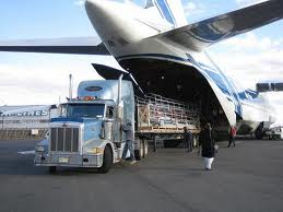 Đại lý vận tải hàng không