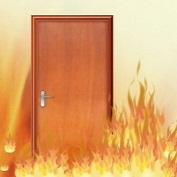 Cửa gỗ chống cháy CC01-B