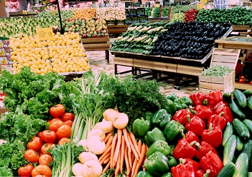 Cung cấp lương thực thực phẩm