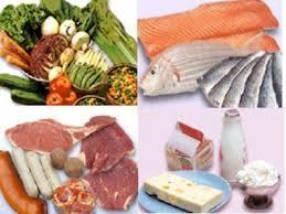 Cung cấp thực phẩm chế biến