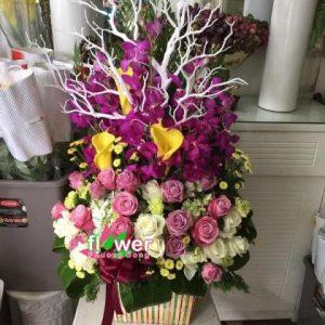 Hoa tặng vip