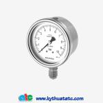 Đồng hồ áp suất Badotherm