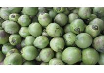 Dừa xiêm nguyên trái