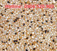 Gạch granito lát nội thất
