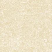 Gạch ốp lát Viglacera