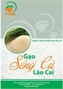 Gạo Séng cù