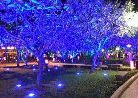 Hệ thống chiếu sáng sân vườn