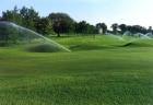 Hệ thống tưới cỏ tự động