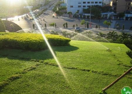 Hệ thống tưới tự động sân vườn