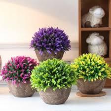 hoa nhỏ để bàn