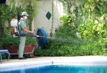 Kiểm soát côn trùng ruồi, muỗi, kiến, gián