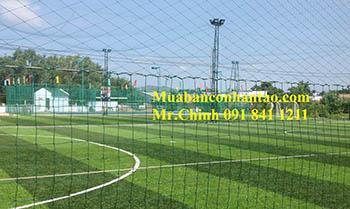 Lưới chắn bóng sân cỏ