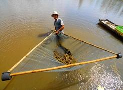 Lưới đánh bắt thuỷ sản