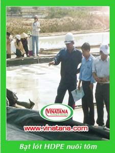 Màng HDPE lót hồ nuôi thủy sản