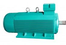 Motor KAIJIELI/ Động cơ KAIJIELI
