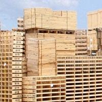 Pallet gỗ Lê Tuân