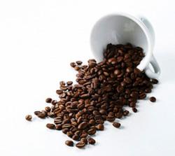 Rang gia công đậu nành cà phê