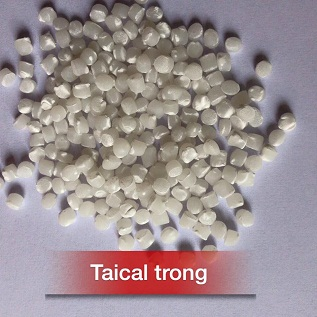 Taical trong