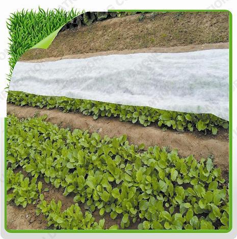 Tấm phủ vườn