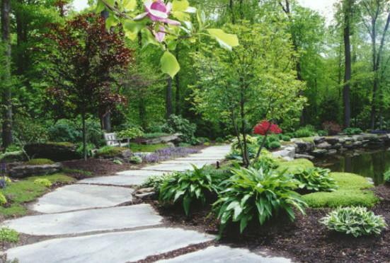 Thiết kế ngoại thất sân vườn
