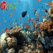 Tour du lịch Hà Nội - Phú Quốc