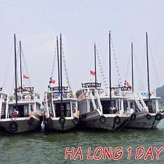 Tour Vịnh Hạ Long (1 ngày)