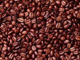 Túi hút mùi cà phê