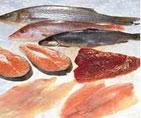Xuất nhập khẩu hải sản đông lạnh